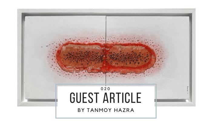 SommerKunstBlog: Tanmoy Hazra